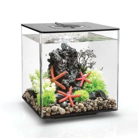 biOrb CUBE 30 LED fekete design akvárium szett