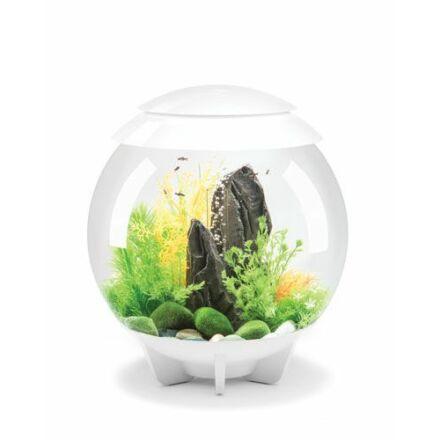 biOrb HALO 30 MCR (színes világítás) design akvárium szett fehér