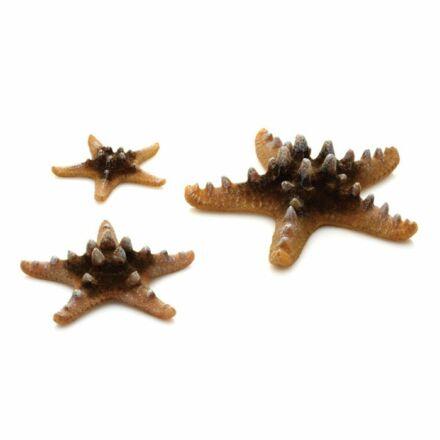 biOrb szarvas tengeri csillag szett 3 darabos sárga