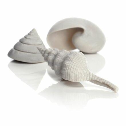 biOrb fehér tengeri kagyló szett 3 darabos