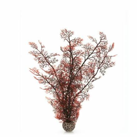 biOrb karmazsinvörös lágy korall kicsi