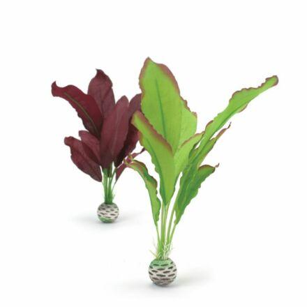 biOrb növényszett 2 részes zöld/lila közepes