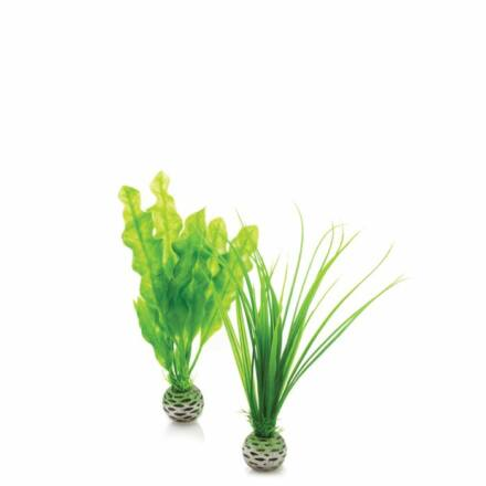biOrb easy plant szett kicsi zöld