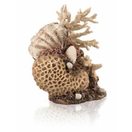 biOrb tengeri kagylós korall közép