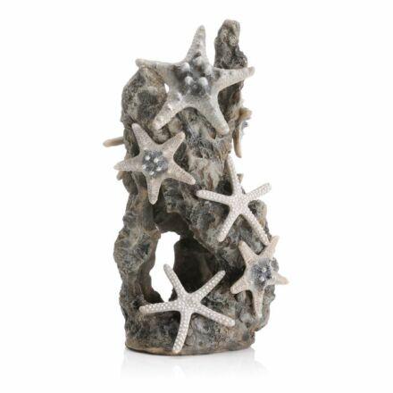 biOrb tengeri csillagok sziklán díszítőelem