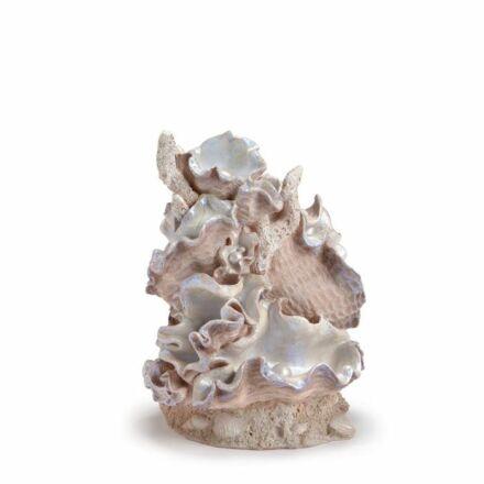 biOrb Samuel Baker tengeri kagylóhéj díszítő elem közepes